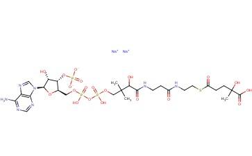 D,L-3-HYDROXY-3-METHYLGLUTARYL COENZYME A DISODIUM SALT