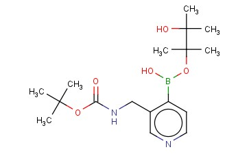 TERT-BUTYL ((4-(HYDROXY((3-HYDROXY-2,3-DIMETHYLBUTAN-2-YL)OXY)BORYL)PYRIDIN-3-YL)METHYL)CARBAMATE