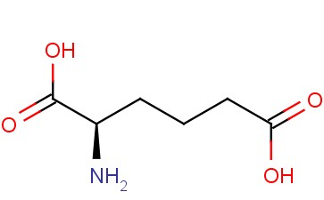 D-2-AMINOADIPIC ACID