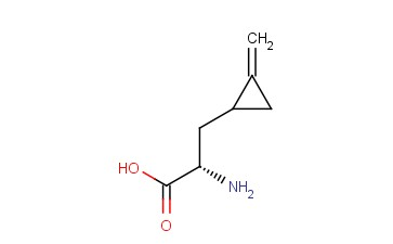 (2S)-2-AMINO-3-(2-METHYLENECYCLOPROPYL)PROPANOIC ACID