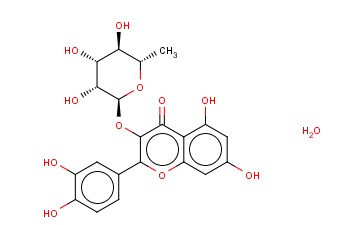 QUERCITRIN HYDRATE