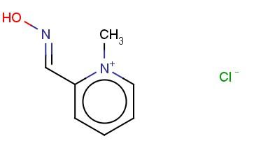 2-PYRIDINEALDOXIME METHOCHLORIDE
