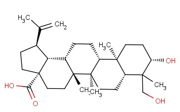 23-hydroxy butulinic acid (23-HBA)