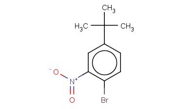 1-BROMO-4-(TERT-BUTYL)-2-NITROBENZENE