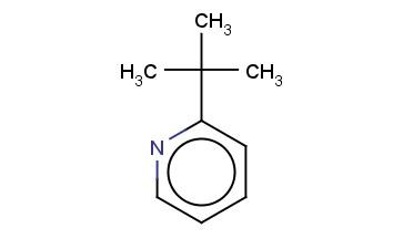 2-TERT-BUTYLPYRIDINE