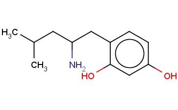4-(2-AMINO-4-METHYLPENTYL)BENZENE-1,3-DIOL