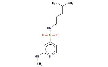 2-(METHYLAMINO)-N-(4-METHYLPENTYL)PYRIDINE-4-SULFONAMIDE