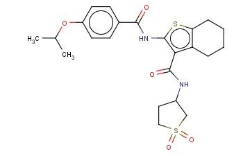 N-(1,1-DIOXIDOTETRAHYDRO-3-THIENYL)-2-[(4-ISOPROPOXYBENZOYL)AMINO]-4,5,6,7-TETRAHYDRO-1-BENZOTHIOPHENE-3-CARBOXAMIDE