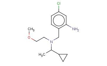 5-CHLORO-2-([(1-CYCLOPROPYLETHYL)(2-METHOXYETHYL)AMINO]METHYL)ANILINE