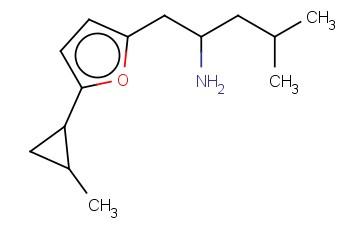 4-METHYL-1-[5-(2-METHYLCYCLOPROPYL)FURAN-2-YL]PENTAN-2-AMINE