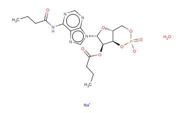 N6-2'-O-DIBUTYRYL-ADENOSINE 3',5'-CYCLOPHOSPHATE SODIUM SALT MONOHYDRATE