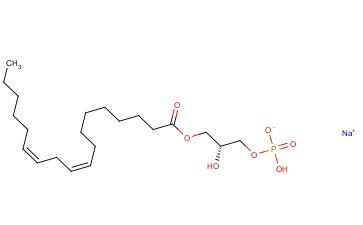1-LINOLEOYL-SN-GLYCERO-3-PHOSPHATE (MONOSODIUM SALT)
