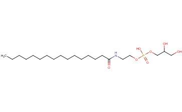 GLYCEROPHOSPHO-N-PALMITOYL ETHANOLAMINE