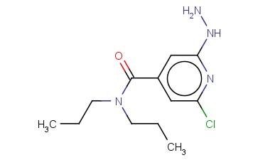 2-CHLORO-6-HYDRAZINYL-N,N-DIPROPYLPYRIDINE-4-CARBOXAMIDE