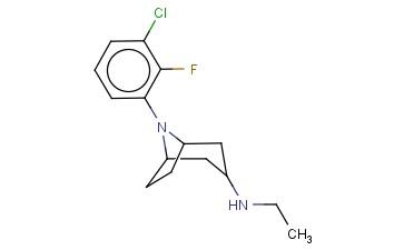 8-(3-CHLORO-2-FLUOROPHENYL)-N-ETHYL-8-AZABICYCLO[3.2.1]OCTAN-3-AMINE