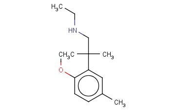 ETHYL[2-(2-METHOXY-5-METHYLPHENYL)-2-METHYLPROPYL]AMINE