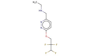 ETHYL(([6-(2,2,3,3-TETRAFLUOROPROPOXY)PYRIDAZIN-3-YL]METHYL))AMINE