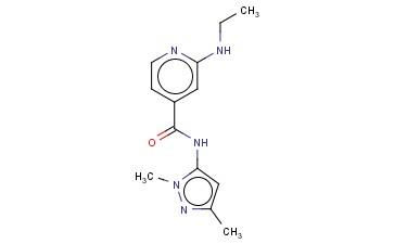 N-(1,3-DIMETHYL-1H-PYRAZOL-5-YL)-2-(ETHYLAMINO)PYRIDINE-4-CARBOXAMIDE
