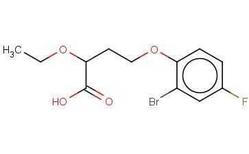 4-(2-BROMO-4-FLUOROPHENOXY)-2-ETHOXYBUTANOIC ACID