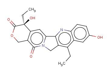 7-Ethyl-10-hydroxycamptothecin