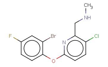 ([6-(2-BROMO-4-FLUOROPHENOXY)-3-CHLOROPYRIDIN-2-YL]METHYL)(METHYL)AMINE
