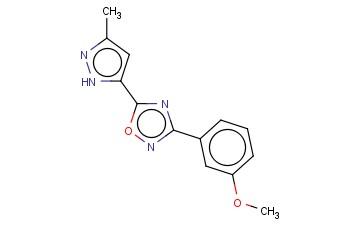 3-(3-METHOXY-PHENYL)-5-(5-METHYL-2H-PYRAZOL-3-YL)-[1,2,4]OXADIAZOLE