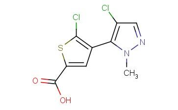 5-chloro-4-(4-chloro-1-methyl-1H-pyrazol-5-yl)thiophene-2-carboxylic acid