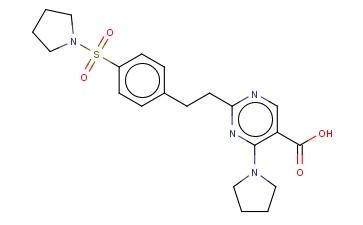 4-PYRROLIDIN-1-YL-2-(2-[4-(PYRROLIDIN-1-YLSULFONYL)PHENYL]ETHYL)PYRIMIDINE-5-CARBOXYLIC ACID